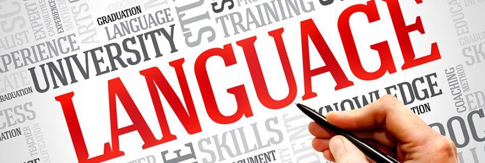 Content languages for websites